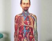 Human Muscles and Organs LAMP