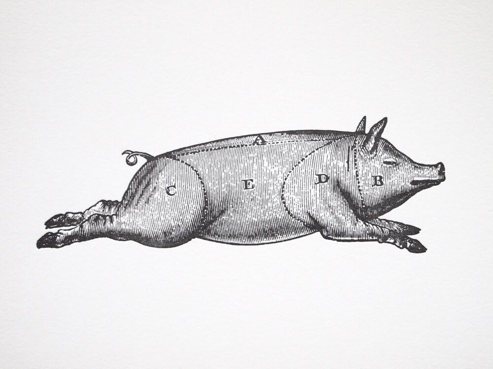 Letterpress Art Print Le Cochon 8x10 Pork Meat Cuts Chart