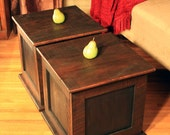 Storage Cube Coffee Table, Reclaimed Wood, Rustic Contemporary, Java & Black Finish - Handmade