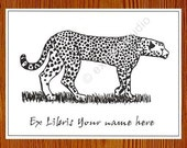 Bookplates Cheetah 25 Personalized Ex Libris