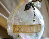 Ex-File Memory Bottle Number 2 by MaggieGlynn