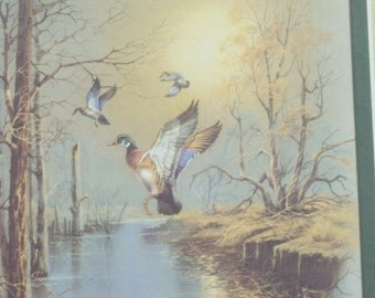 Vintage Framed Pair of  Outdoor  Duck Wilderness Prints by Andres Capina
