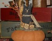Black Cat on Pumpkin Gourd