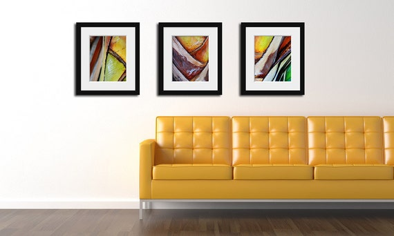 """Collection of Three 11""""x14"""" Abstract Palm Tree Photographs. 20% Savings. Affordable Home Decor. Tropical Wall Art."""