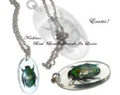 Necklace:  Exotic Real Green Beetle Scarab In Lucite Vintage