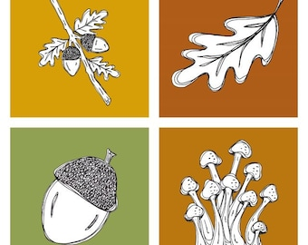 Fall Woodland Wall Art Prints 5x5 - Set of 4 - Quick Draw - Acorns, Mushrooms, Oak Leaf - Home Decor