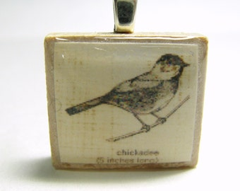 Chickadee drawing - vintage dictionary Scrabble tile pendant