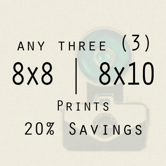 Photography - Save 20% on any three 8x8 or 8x10 prints