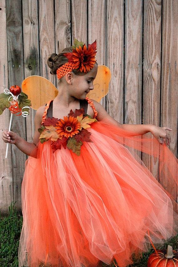 Beautiful Fall Fairy P...