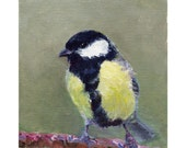Great Tit original oil painting 4x5in