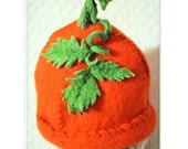 baby hat / pumpkin wool felt hat