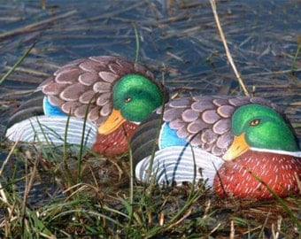 How to paint a mallard duck on rock - rock painting pdf tutorial