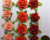 New Prima Flower -  Fairytale Roses Coral