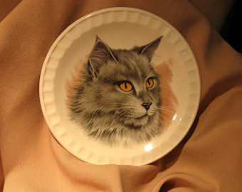 VINTAGE  FELINE Collectible CAT  Dish / Pin /Display Dish by Hanley Falcon  Ware Pottery England