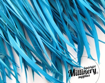 Turquoise Goose Biot Feather Fringe, 5 Inch Piece (30 or More Feathers) for Millinery and Craft