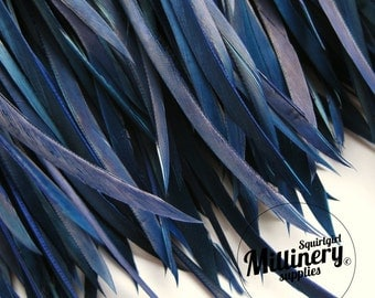 Navy Blue Goose Biot Feather Fringe, 5 Inch Piece (30 or More Feathers) for Millinery and Craft