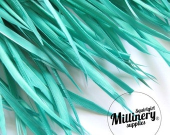 Jade Goose Biot Feather Fringe, 5 Inch Piece (30 or More Feathers) for Millinery and Craft