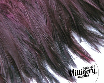 Hackle Feather Fringe for fascinators, millinery and crafts (Around 60 feathers) - Plum Purple