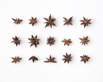 Star Anise Collection. 8x10. Fine Art Photographic Print. Minimal. Natural Home Decor. Indoor garden botanical. Kitchen
