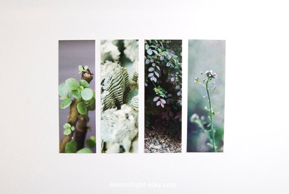 Bookmarks Set - Photo Series - Green. Nature photography bookmark. Naturalist. Botanical. Book lovers gift. Stocking stuffers.