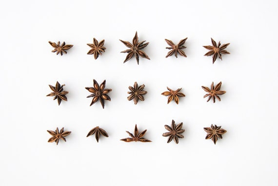 Star Anise Collection. 8x10. Fine Art Photographic Print. Minimal. Natural Home Decor. Indoor garden botanical. Kitchen
