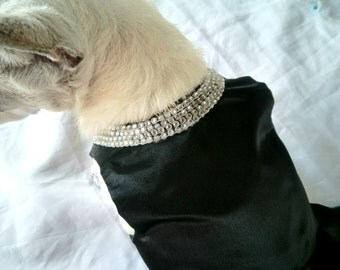 Dogs, Cats, Pets black dress - Breakfast at Tiffanys