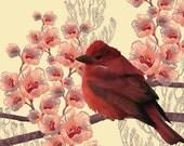 Bird With Flowers - Original Illustration Print