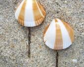 Seashell Bobby Pins-Set of 2-Large Striped-Beach Weddings, Mermaid Hair, Seashells, Summer Beach Hair, Surfer Girl, California Dreaming