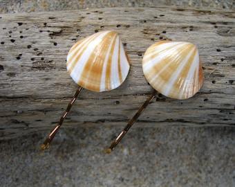 Seashell Bobby Pins-Set of 2-Brown/White Striped-Beach Wedding, Seashell Wedding, Mermaid Hair, Seashell Hair Accessories, Seashells