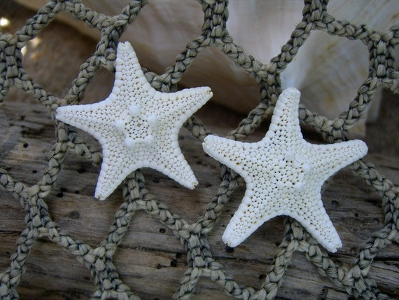 Starfish Earrings-Beach Weddings, Coastal Weddings, Gifts for Her, Starfish Accessories, Gifts under 20, Mermaids, Nautical Earrings