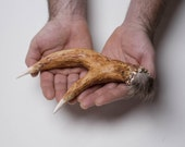 Featured on Etsy Finds and Keep it Weird ....SALE Deer antler shaker/rattle
