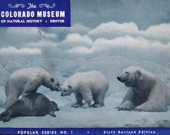 Vintage Colorado Museum of Natural History Guidebook from 1946