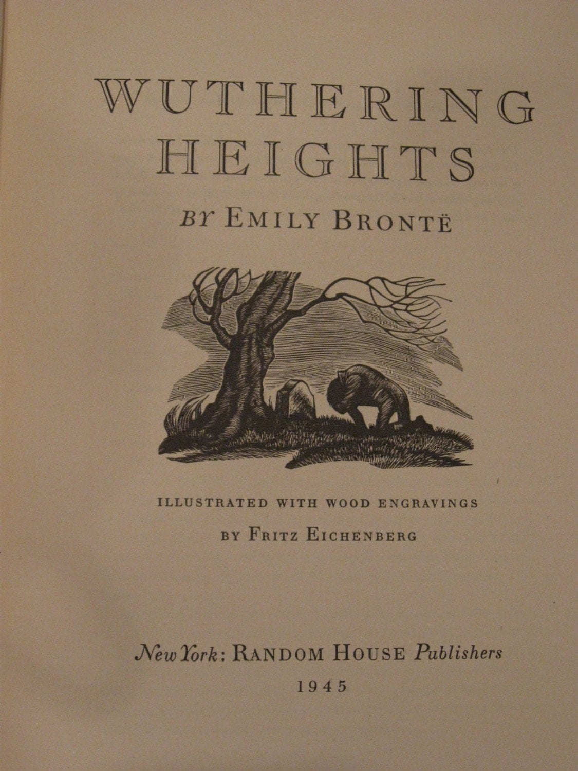 wuthering heights by emily bronte essay Suggested essay topics  1discuss the novel's narrative structure are the novel's narrators trustworthy why or why not with particular reference to nelly's story, consider what might be gained from reading between the lines of the narration.