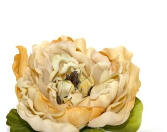 1  Large Banana Cream Pie Peony - Artificial Silk Flower - PRE-ORDER