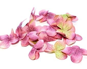100 Hydrangea Blossoms in Mauve Pink - PRE-ORDER