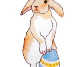Easter Bunny Greeting Cards - Set of 6 Illustrated Note Cards