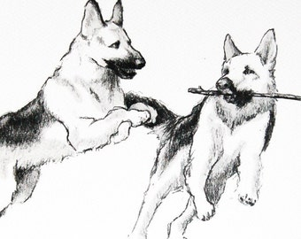 Print - German Shepherds Playing - 11 X 14