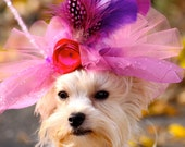 Dog Hat, Puppy Hat, Kentucky Derby Hat, Feather Fascinator, Pet Hat, Dog Easter Bonnet, Dog Costume, Hats for Dogs, Large or Small Dogs, Pet