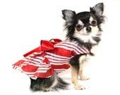 Candy Cane Kisses Dog Dress