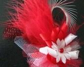 Love Bug Feather Fascinator Dog Hair Bow