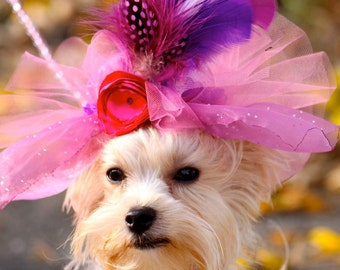 Dog Feather Fascinator Hat, Beverly Hills