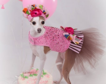 Dog Tutu Harness Dress - Birthday Sprinkles