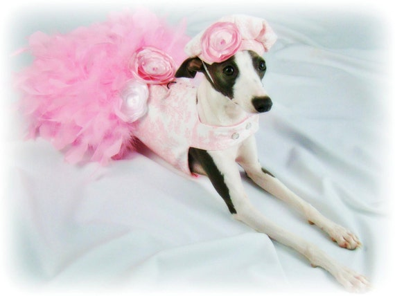Pink Toile Feather Harness Dog Dress