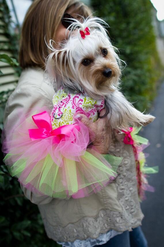 Dog Tutu Harness Dress, Watermelon Damask Pink & Lime