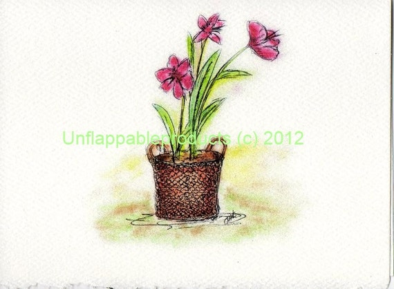 Amaryllis in a basket Note Cards - Set of Five Cards