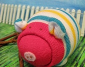 Stripped Young Sock Pig