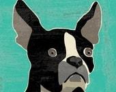 boston terrier fine art reproduction print