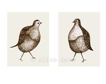 pigeon pair double portrait - fine art print