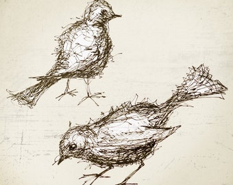 two birds, fine art, pigment ink, archival  giclee print