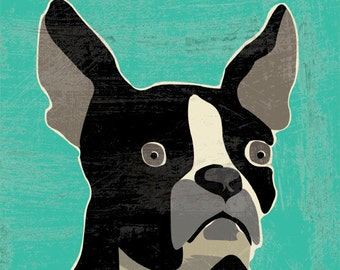 boston terrier LARGE fine art reproduction print